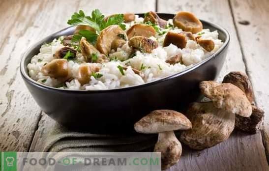 Svamp risotto - hemligheterna och subtiliteterna att laga italienska rätter. Recept för utsökt risotto med svamp