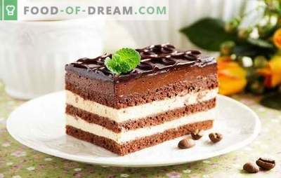 Opera cake - a harmonious dessert. Recipes of various Opera cakes with currants, coffee, nuts, Swiss cream