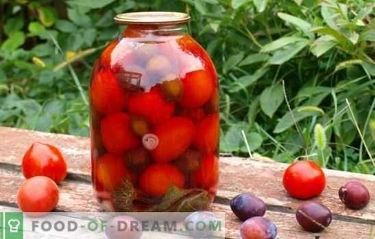 Tomater med plommon för vintern - vi kommer komma ihåg sommaren! Recept och hemligheter av matlagningsämnen av tomater med plommon för vintern