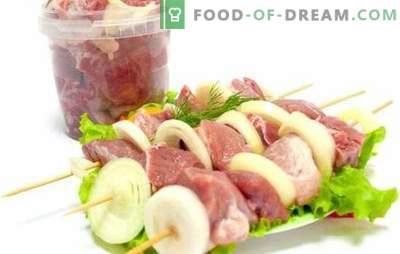 Marinade für Kebabs mit Essig und Zwiebeln - das beliebteste! Rezepte mit Kebab-Marinade mit Essig und Zwiebeln aus verschiedenen Fleischsorten