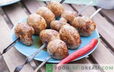 Šampinjoni na žaru - originalna predjed! Kako kuhati okusne champignons na žaru: recepti in subtleties