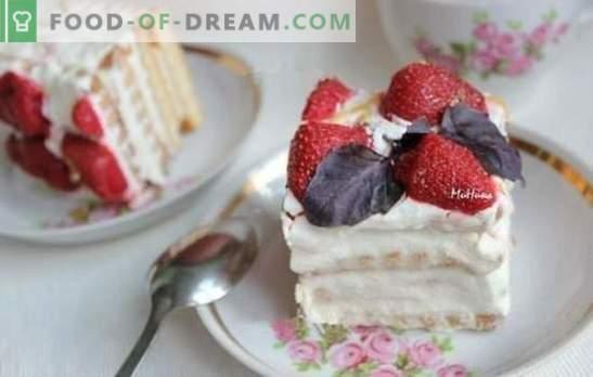 Torta iz skute brez peke - nikoli ni lažje, ne morete se spomniti ničesar bolj uporabnega! Recepti za skute s pecivom, čokolado in želatino