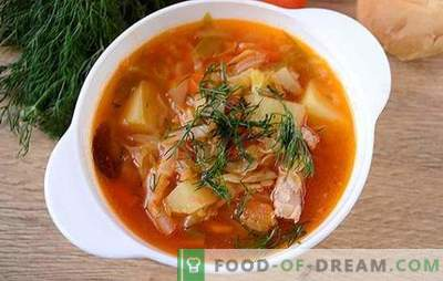 Soppa med färskkål i en långsam spis: Snabbt, lätt, gott! Författarens steg-för-steg foto recept för att laga kål från färskkål i en långsam spis