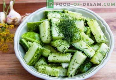 Gurksallad - de bästa recepten. Hur rätt och gott att laga gurka sallader.
