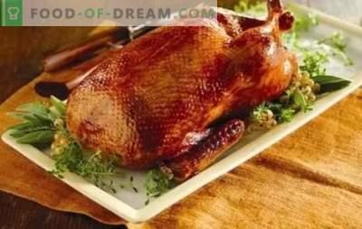 Hemgjord anka i ugnen: steg-för-steg recept av en röd, saftig och doftande fågel. Matlagning hemlagad anka i ugnen med steg-för-steg recept