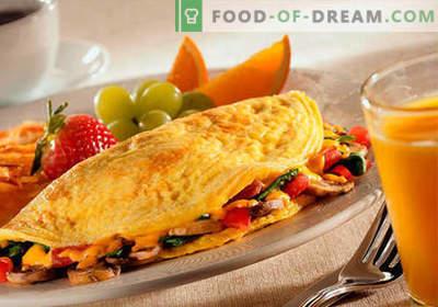 Omelet într-o bucătărie lentă - rețete dovedite. Cum să gătești în mod corespunzător și gustos o omletă într-un aragaz lent.