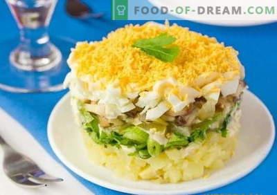 Layered sallad med svamp - ett urval av de bästa recepten. Hur man ska ordentligt och välsmakande lagad matlagad sallad med svamp.