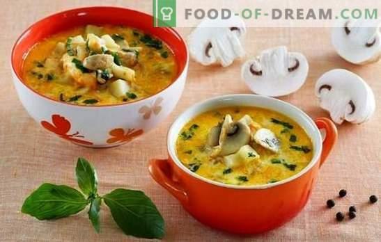 Sriuba su česnakais ir sūriu - palepinkite savo šeimą! Geriausių sriubos receptų su grybais ir lydytu sūriu pasirinkimas